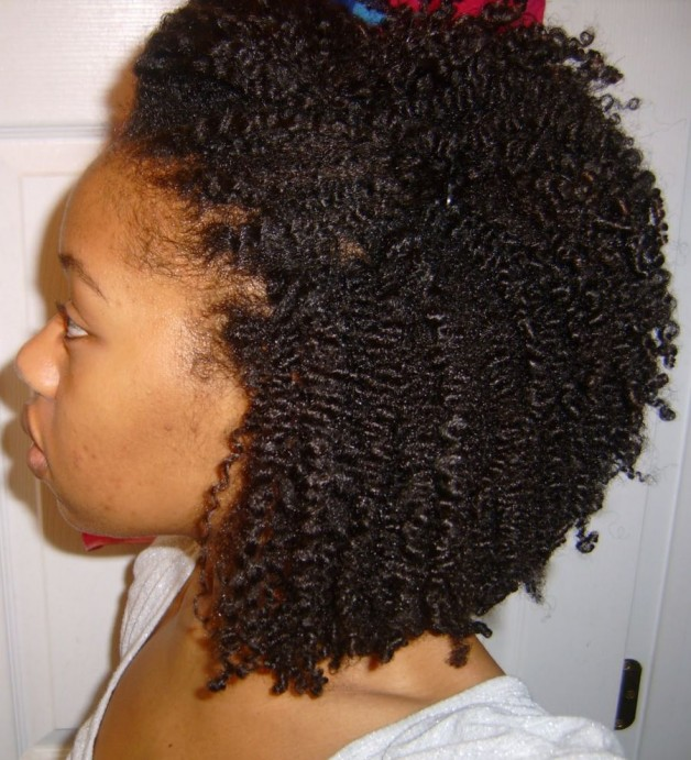 natural hairstyles ideas