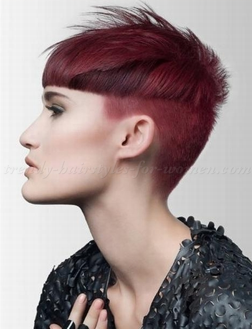 Undercut Hairstyle For Women's - The Xerxes