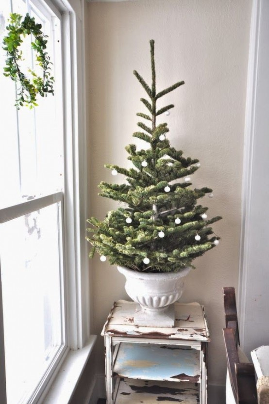 Christmas Tree Ideas (10)