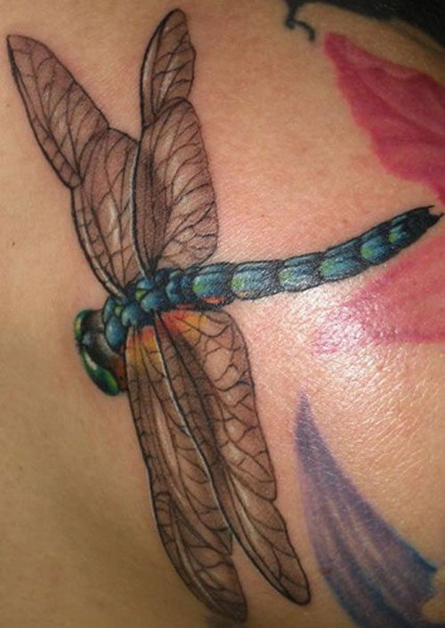 Realistic Dragonfly Tattoo Designs